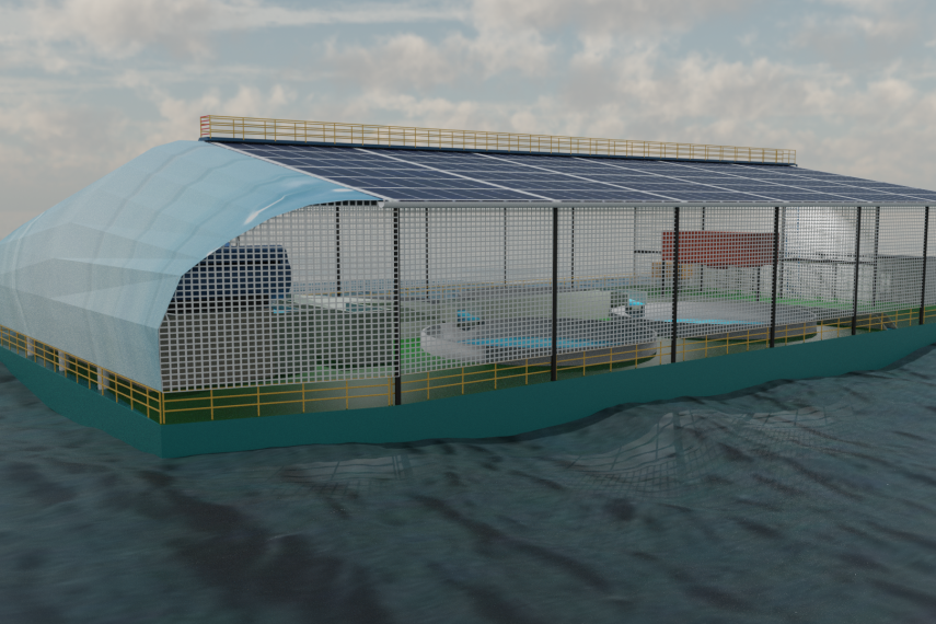 Aqua Culture Dock